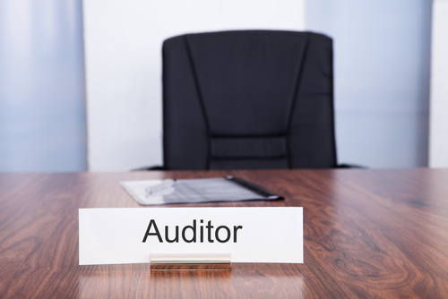 Trigger a Business Audit